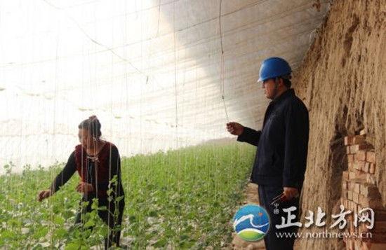 2月25日,赤峰市敖汉旗木头营子供电所的工作人员在该乡青山村蔬菜大棚了解用电情况。