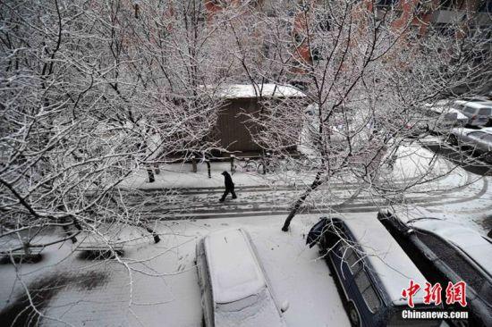 三月雪扮靓沈阳城 中新社发 于海洋 摄