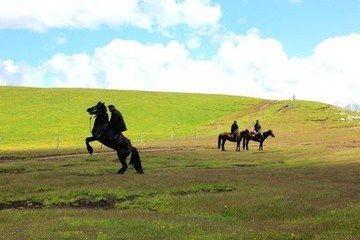 骑马注意事项