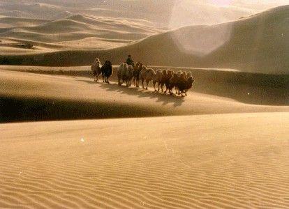 沙漠注意事项