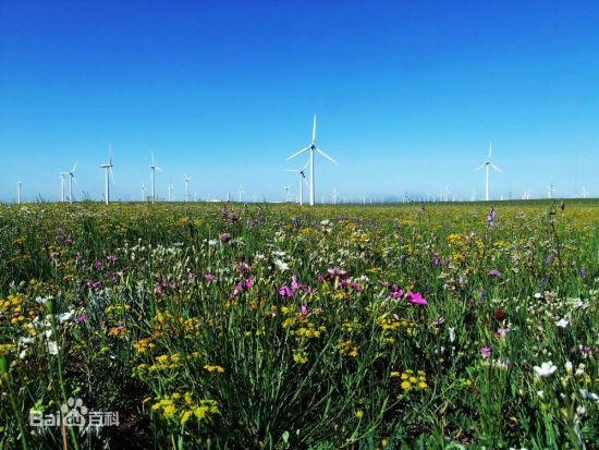 黄花沟草原景区自然风光