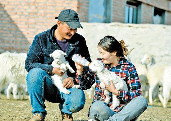 东乌珠穆沁旗满都宝力格镇陶森淖尔嘎查牧民贺希格(左)和妻子胡达古拉一起喂小羊羔吃奶(4月13日摄)