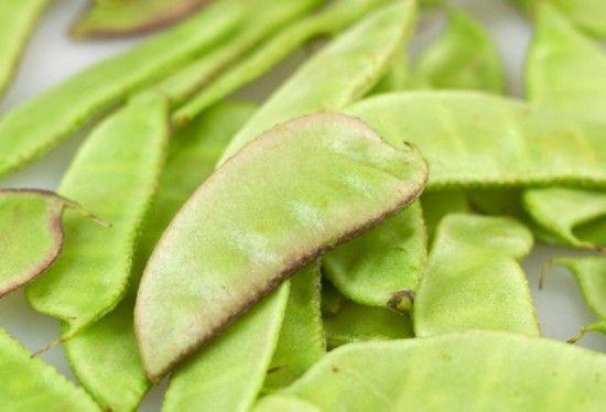 这7种常吃蔬菜居然有毒