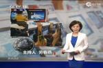 上海部分游戏机房变赌场 警察敷衍查赌