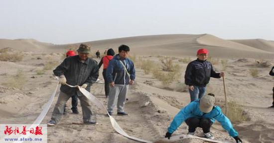 苏老和青年志愿者们给梭梭浇水。 李倩天摄