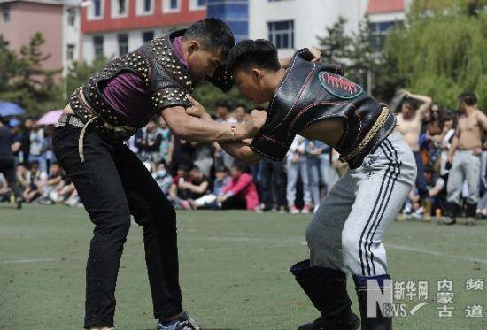 5月8日,呼和浩特民族学院学生在搏克比赛中。