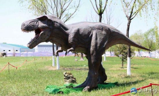 """5月12日,集科普性、趣味性和观赏性于一体的仿真恐龙群展""""重返侏罗纪""""在呼和浩特市展出。"""