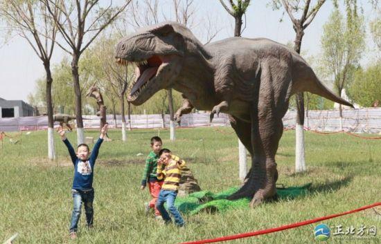 """据了解,本次展出达到30多个品种,所有恐龙展品均为高仿真橡胶制作,姿态各异,栩栩如生,展品运用先进的声控和远红外技术控制,只要有人走进感应范围,恐龙就会动起来发出叫声,让人们身临其境的感受""""侏罗纪时代""""。"""