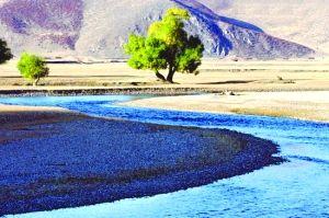一抹绿树衬溪流