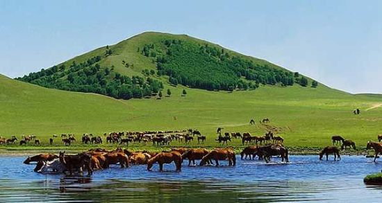 公主湖景观