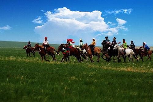 骑马游草原