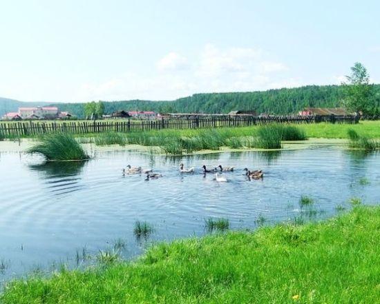 根河湿地美景