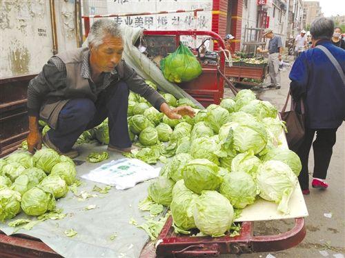 包头市昆区光彩街市场内,菜贩正在销售本地菜