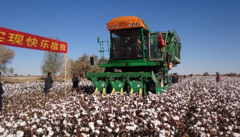 机械化采棉