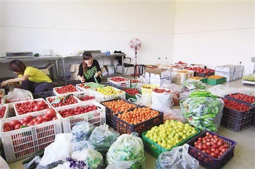 工作人员将有机蔬菜装箱准备送往超市