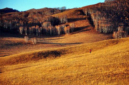 乌兰布统草原秋景