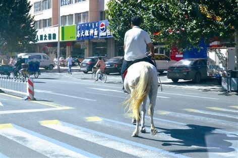 骑白马的男子