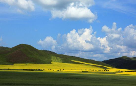 欢聚在呼伦贝尔大草原