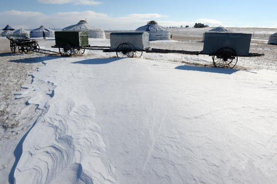 冬季呼伦贝尔