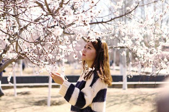 呼和浩特市民在公主府公园观赏满园盛开的桃花