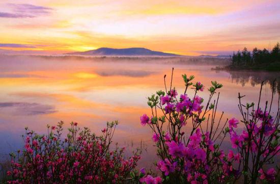 阿尔山国家森林公园 大兴安岭秀丽的风景线