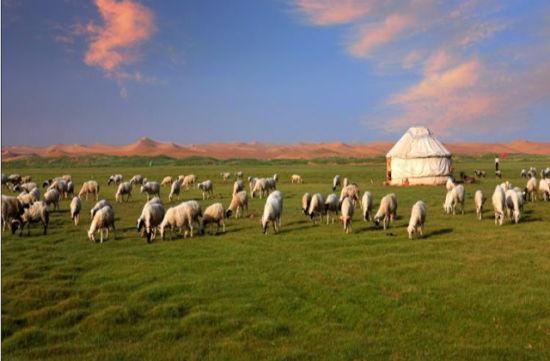美丽富饶的内蒙古