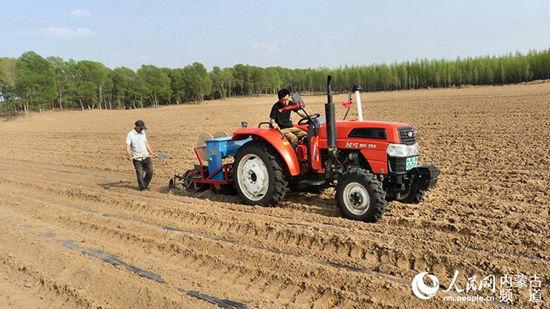 库伦旗六家子镇小南京洼村农民正在抢墒播种玉米膜下滴灌田