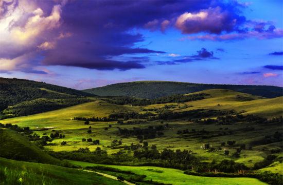 无垠的草原