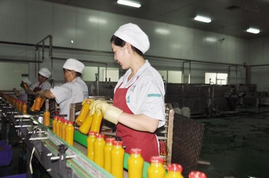 6月9日,在赤峰市敖汉旗沙漠之花生态产业科技有限公司,工人正在装拣刚刚灌装好的沙棘饮料。敖汉旗是全国沙棘生态建设示范县,该公司依托当地的资源优势,从事沙棘、杏仁等系列产品的开发,产品远销广东、北京等地。今年15月,销售额达4141万,同比增长932万。(陈春艳)