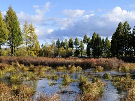 海拉尔国家森林公园(原海拉尔西山风景区),早在清代就因被列为呼伦