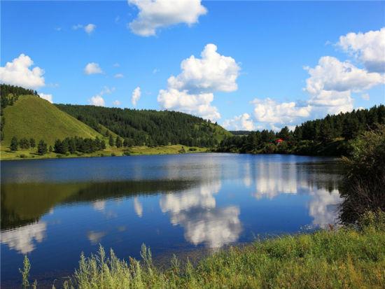 红花尔基森林公园 新浪内蒙古旅游 新浪内蒙古