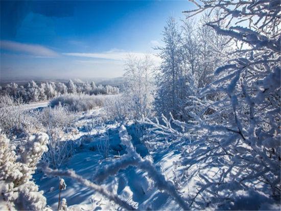 大雪覆盖 茫茫雪原 内蒙古让你邂逅最美冬季