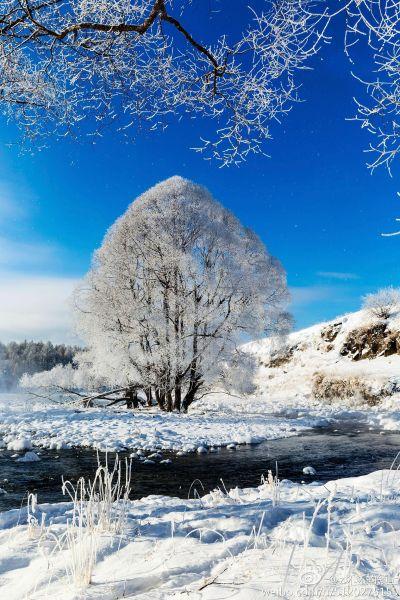 冰雪阿尔山,你有一场旅行