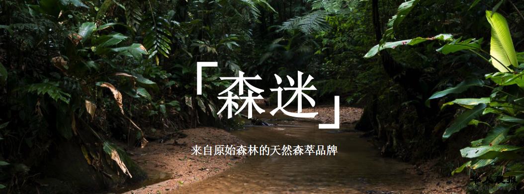 亚马逊原始森林动物