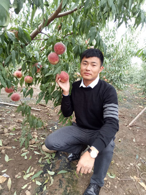 90后王志伟的桃树梦和他的成长经历