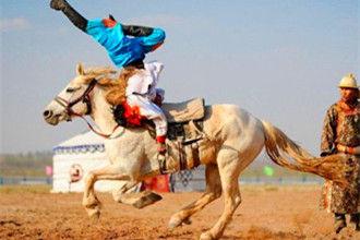 蒙古马术精彩表演