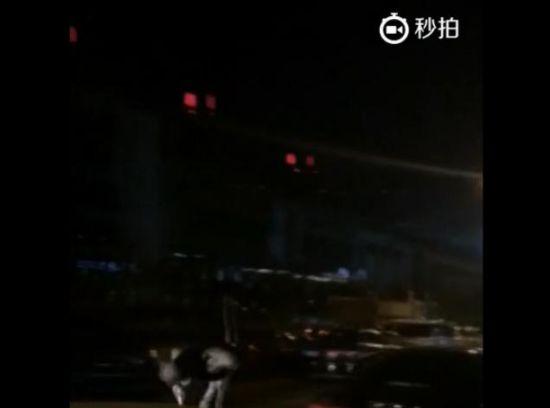 实拍北京1只鸵鸟夜晚在街头奔跑