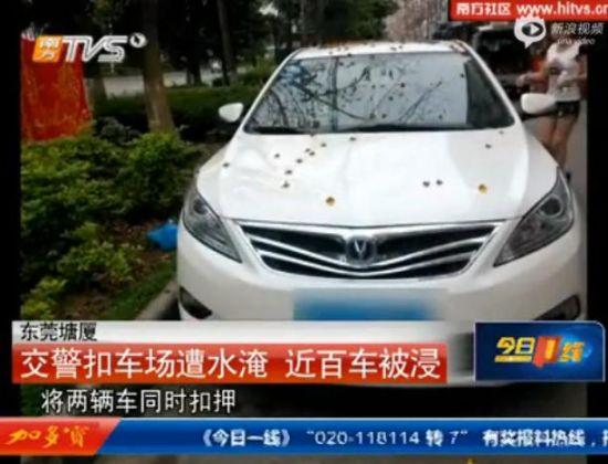 东莞交警扣车场暴雨中遭淹百车被浸